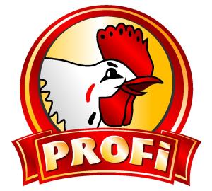 profi_logo_300x270